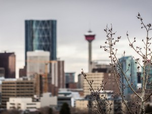 Calgary Photography