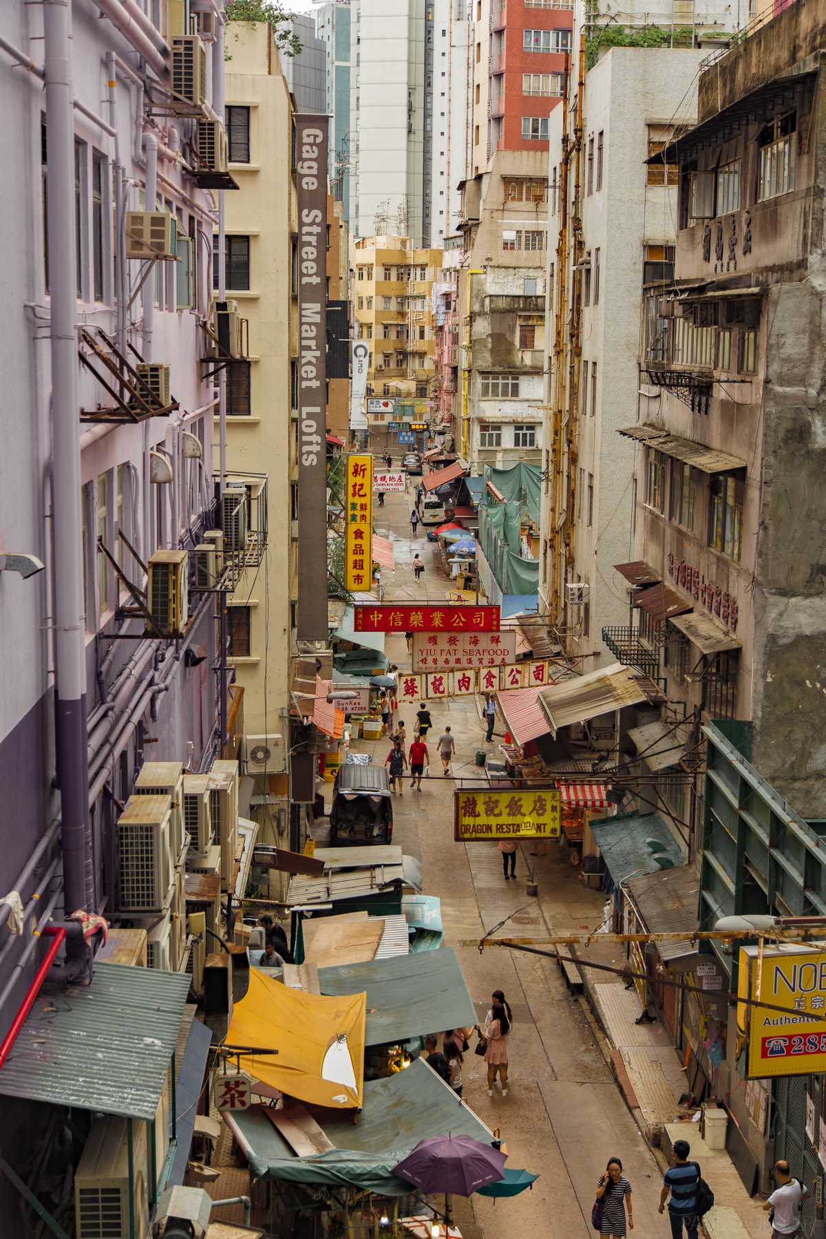 Hong Kong Island 3 Of 7 Photo Gallery Paul Saulnier